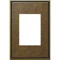 ADORNE 1-GANG+ CAST METAL WALL PLATE, Aged Brass, medium