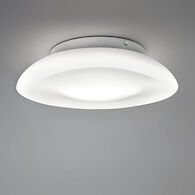 LUNEX 17-INCH WALL/CEILING LIGHT E26, Opal White, medium